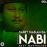 Sarey Nabian Da Nabi - Best Qawwalies