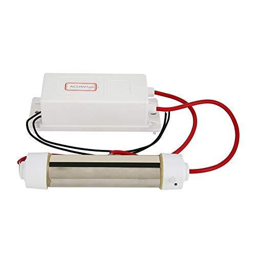 Generador de ozono de 8L/min, máquina de esterilización de purificador de agua y aire ionizador de ozonizador para purificación de aire y agua, esterilización de frutas vegetales(2g)