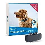 Tractive collier GPS pour chien, Traceur avec portée illimitée, Suivi d'activité, Étan...