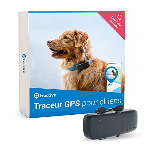 Tractive collier GPS pour chien, Traceur avec portée illimitée, Suivi d'activité, Étanche, Léger (Dernier modèle)