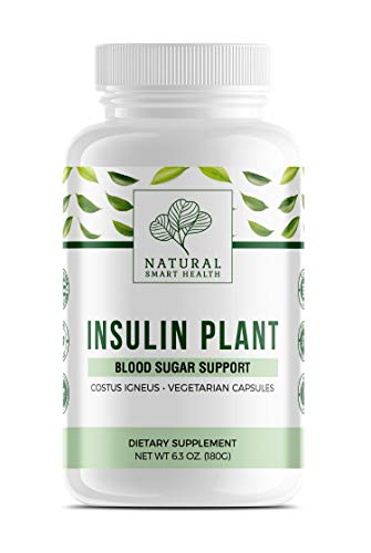 The Original Insulin Plant Vegetarian Capsules...