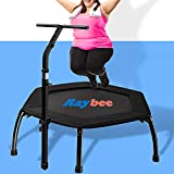 """Raybee Fitness Trampoline Adults 44"""" with Folding Leg Exercise Rebounder Trampoline with Adjustable Handle Bar, Quiet Mini Trampoline Indoor Outdoor Garden Workout Max 335lbs"""
