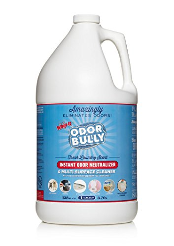 Whip-It Odor Bully Instant Odor Neutralizer - Stain Remover and Odor Eliminator for Home and Car in One (128 oz)