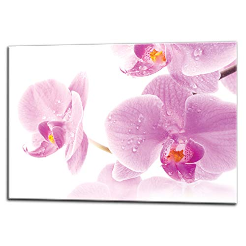 Pantalla antisalpicaduras de cristal/Panel de vidrio templado para cocina, 75 x 60 cm, Orquídea, UltraClear  Glass