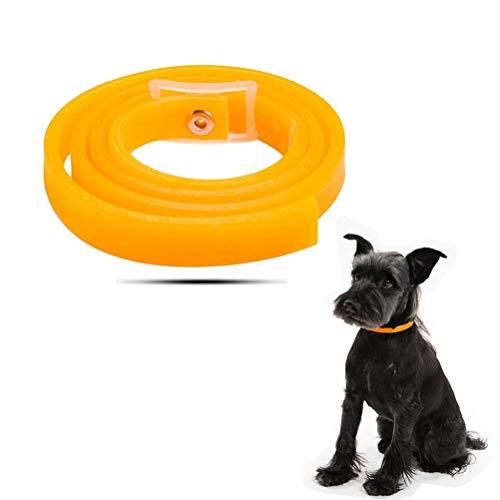 Yissma Halsband für Hunde und Katzen, Wasserdicht Hund Flohhalsband für Kleine Groß Haustiere,Nat...