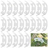 RoadLoo Clips per Piante, 100 Pezzi Piegatrice per Piante Clip Plastica Garden Trellis Plant Flower Clip Pomodoro Verdure Clip Fissaggio Innesto Attrezzi da Giardinaggio per Piant Fiori da Coltivare