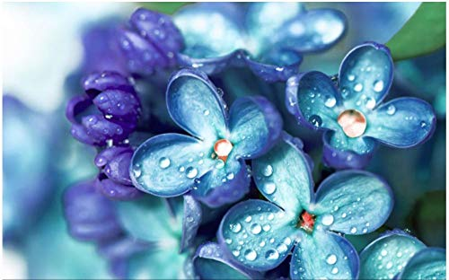 Wallpaper M Puzzle Jigsaw,Blue Purple Flowers and Drops of Water After Rain,Puzzles for Grown Ups 1000 Piece Jigsaw Puzzles for Adults Jigsaw Floor Puzzle Friendly Material Store Jigsaw Puzzles Up to