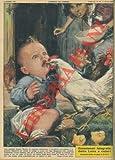 A Luino, una gallina strappa via ad un bambino di due l'unico dentino che gli era spuntato da poco, scambiandolo per un chicco di riso.