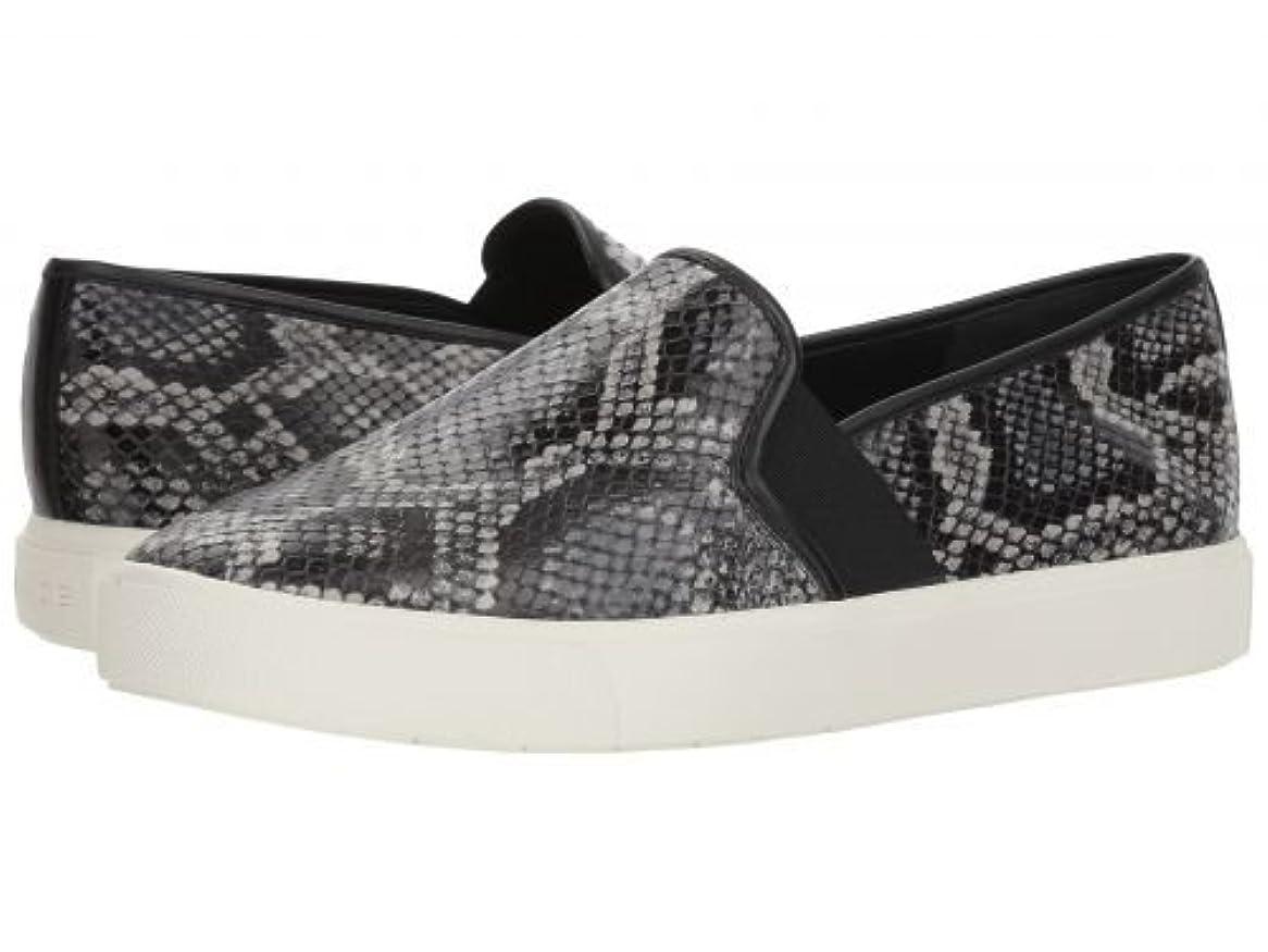 幸運なに慣れカテゴリーVince(ヴィンス) レディース 女性用 シューズ 靴 スニーカー 運動靴 Blair 5 - Granite Azzura Snake Print Leather [並行輸入品]