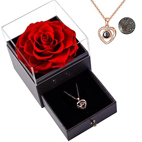 Roqueen Rosa Eterna, Rosa Preservada con Collar Verdadera Rosa Siempre, Regalos para día de San Valentín Día de la Madre Boda Aniversario Cumpleaños para Novia Esposa Madre