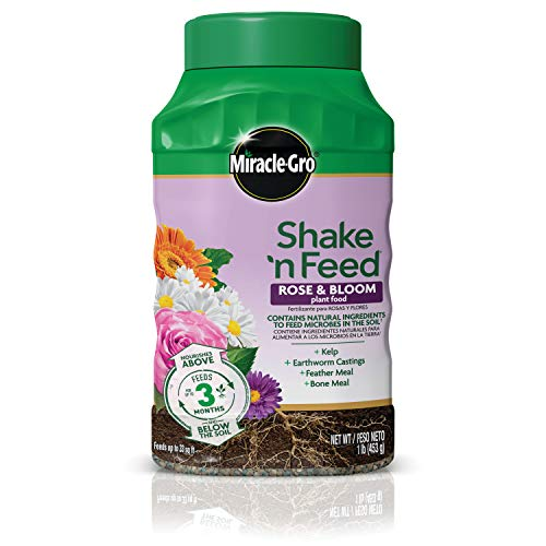 Miracle-Gro 3006806 Shake 'n Food-Promotes More Blooms and Spectacular Colors (vs. Unfed, Feeds Roses and Flowering Plants for up to 3 Months, 1 lb