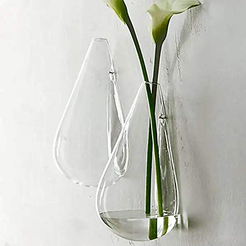 HO-TBO Plante terrarium suspendue en verre pour jardin hydroponice, transparent, taille unique