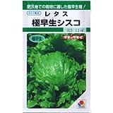 【種子】レタス 極早生シスコ 1.1ml