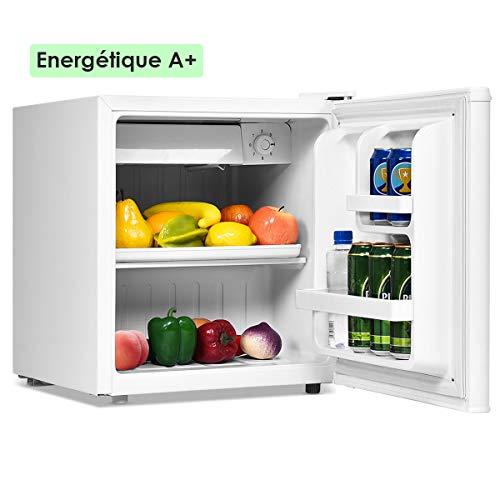avis classement réfrigérateur professionnel Mini réfrigérateur GOPLUS 48l, réfrigérateur 0-7 ℃ à température réglable, 2 clayettes, porte…