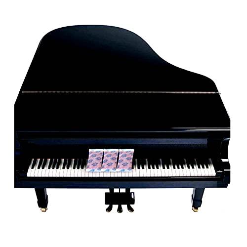 Bolsas De Gel De SíLice Sachets Desecante PequeñO Paquete De Gel De Sílice Desecante Deshumidificadores Indicación de Color Reutilizable para Piano,Guitarra,bajo,Guzheng,audífono,Lente de cámara