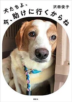 [沢田俊子]の犬たちよ、今、助けに行くからね
