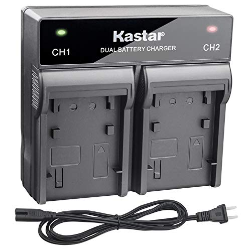 Kastar Dual Rapid Charger for Sony NP-F980 Pro NP-F960 and Sony MVC-FD83 MVC-FD85 MVC-FD87 MVC-FD88 MVC-FD90 MVC-FD91 MVC-FD92 MVC-FD95 MVC-FD97 MVC-FDR1 MVC-FDR3 HDV-FX1 HDV-Z1 Camcorder