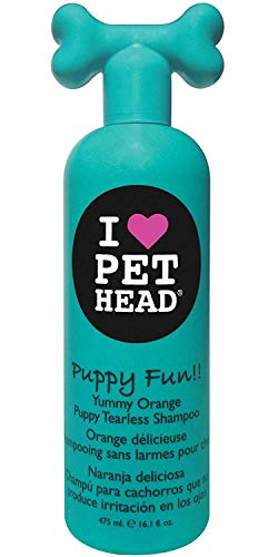 Puppy Fun!! Tearless Yummy Orange Shampoo for Pug Puppies