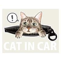 CAT IN CAR キャットインカー 猫 ネコ かわいい ゆるかわ デザイン ステッカー 117×85ミリ シール 車用ステッカー