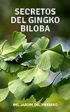 SECRETOS DEL GINGKO BILOBA: Un Árbol Único en el Mundo