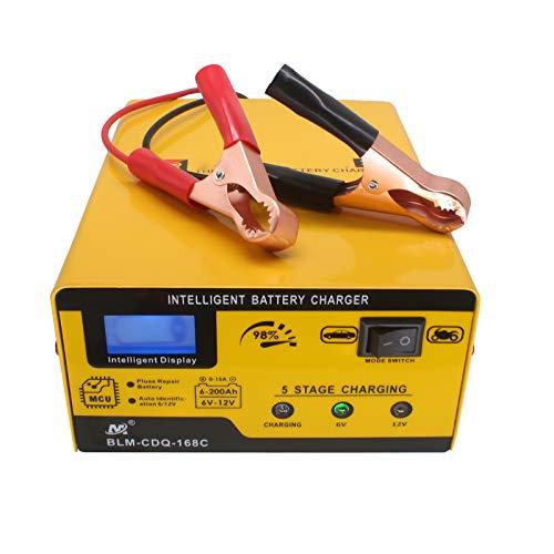 Etrogo Caricabatterie al Piombo 12V/6V 10A Caricatore di impulsi Caricabatterie Intelligente con Schermo LED per Auto, Moto, Giocattoli
