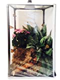 Lepidtarium (38-Gallon)-Butterfly Rearing & Breeding Cage, 16.5 x 16.5 x 30-inches (4.73 Cu. Ft.),LH38