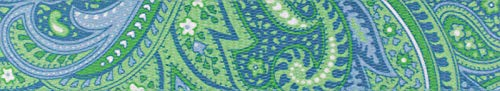 Country Brook Design 1 Inch Green Paisley Polyester Webbing, 5 Yards