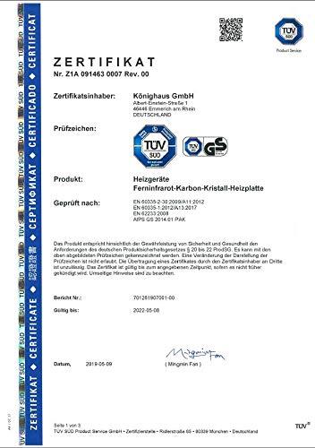 Könighaus Fern Infrarotheizung – Bildheizung in HD Qualität mit TÜV/GS – 200 Bilder – 800 Watt (200. Ölgemälde Baum Wasser) Bild 2*