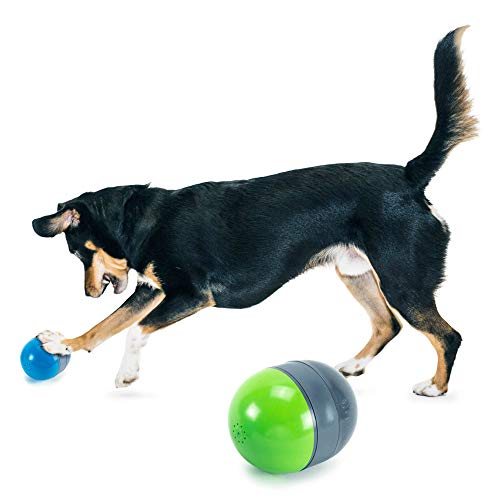 petsafe chew toys for dogs PetSafe Ricochet - Electronic Squeaking Dog Toy - 2 Paired Toys Squeak to Keep Dogs Busy - Engaging Puzzle for Bored, Anxious or Energetic Pets