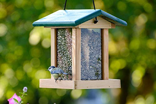 dobar 90040FSCe Futterspender Vogelfutterhaus aus Holz für Wildvögel, 21 x 21 x 28 cm, grün - 4
