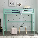 New Twin Metal Loft Bed in Mint Color