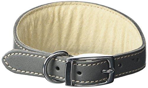 BBD Pet Products Collar Whippet de tamaño único, 3/4 x 12 a 14 Pulgadas, Gris