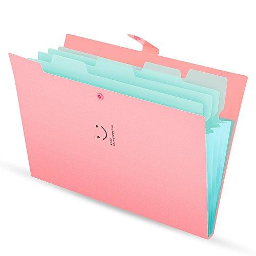 Fächermappe 4 Fächer A4 Ordner Dokumentenmappe PP Erweitern Schulordner dokumente organizer Pink Cover