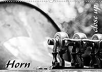 Horn - Close Up (Wandkalender 2022 DIN A3 quer): Detailaufnahmen eines Horns (Monatskalender, 14 Seiten )