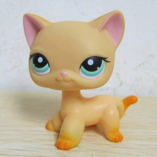 Solo 339 Yellow Short Hair Kitten Cat Good Luck Charm LPS Toy