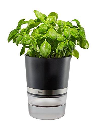 Gefu Herb Pot, Silver/Black