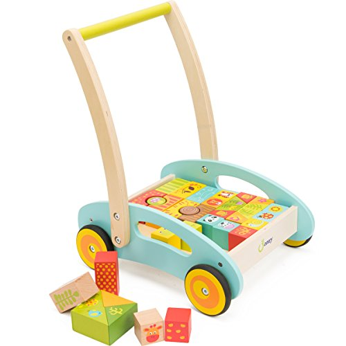 Great Features Of cossy Wooden Baby Learning Walker Toddler Toys for 1 Year Old Forest Theme Blocks ...
