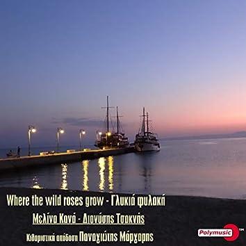 Where The Wild Roses Grow - Glykia Fylaki
