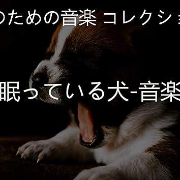 眠っている犬-音楽