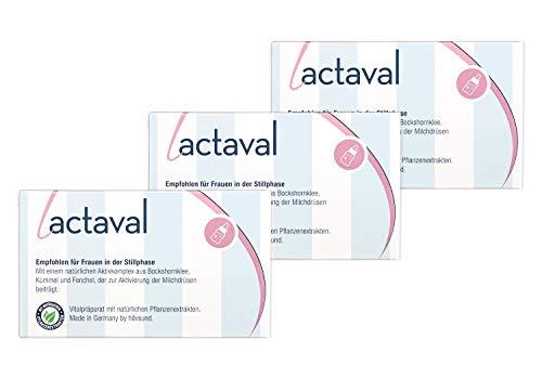 håvsund lactaval - 3 Monate - Nahrungsergänzung mit Bockshornklee, Fenchel, Kümmel für die Stillzeit - Hergestellt in Deutschland Monatspackung 180 Kapseln