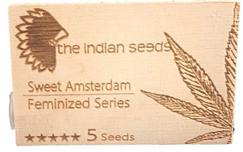 """Sweet Ámsterdam - surtido de 5 semillas fem. para interior + ebook\""""recetas de risa\"""""""