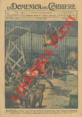 Durante l'esecuzione del 'giro della morte' un motociclista finiva nella gabbia dei leoni, feriva il domatore e riusciva a salvarsi.
