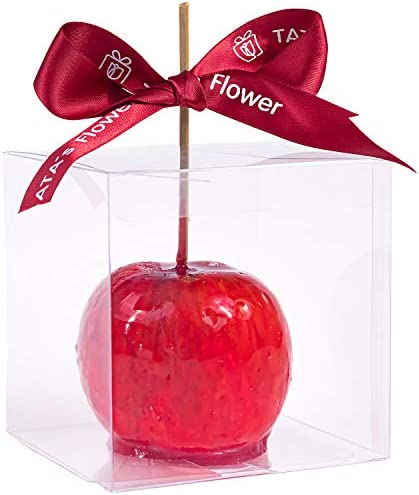 Clear Candy Apple Boxes with Hole 4 x 4 x 4 Transparent Favor Boxes Set of 20 Food Grade Treat product image