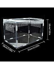 Caja Transparente Para Cría De Reptiles, Terrario Acrílico Pequeño Con Vista Completa Visualmente Con Diseño Deslizante Caja De Alimentación Para Insectos, Reptiles, Tarántulas, Anfibios, Orugas, Críq