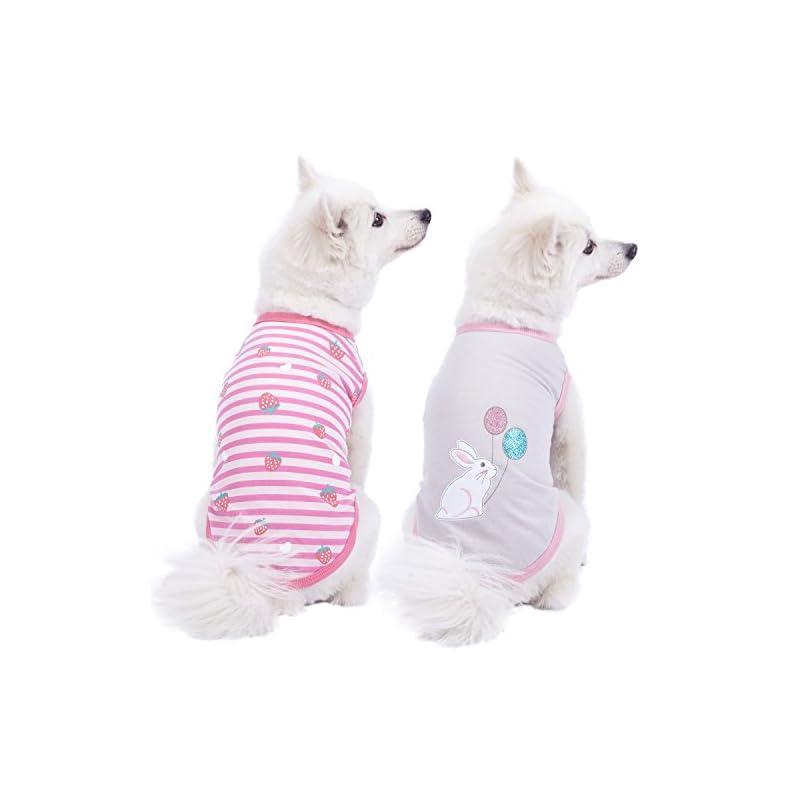 "dog supplies online blueberry pet pack of 2 soft & comfy wonderland striped cotton blend dog t shirts, back length 12"", clothes for dogs"