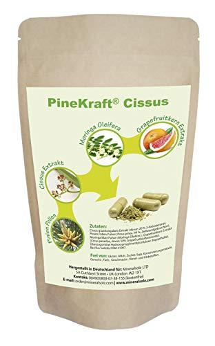 Pinien Pine Pollen I Cissus Quadrangularis Extrait de Pamplemousse, 3 cœurs, 50% Pamplemousse, 50% Pamplemousse I Moringa Oleifera I PINEKRAFT CISSUS I 90 gélules 47 g