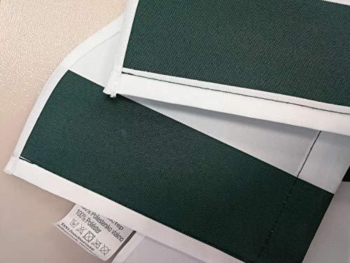 Home & Trends Markisen Volant Markisenbespannung Ersatzstoffe SPD018 Grün Weiß Maße 3 x 0.23 m Markisenstoffen fertig genäht mit Bordeux