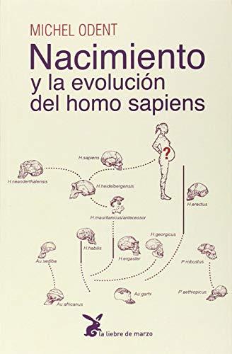 Nacimiento y La Evolucion Del Homo Sapie