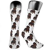 Calcetines deportivos medio acolchados para hombres, mujeres, niños, adolescentes, absorbe la humedad, resistentes al olor (perro salchicha divertido)