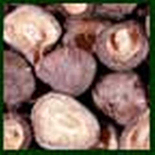 Mushroom List price Special sale item Petite Shiitake - 5 Lb Unit